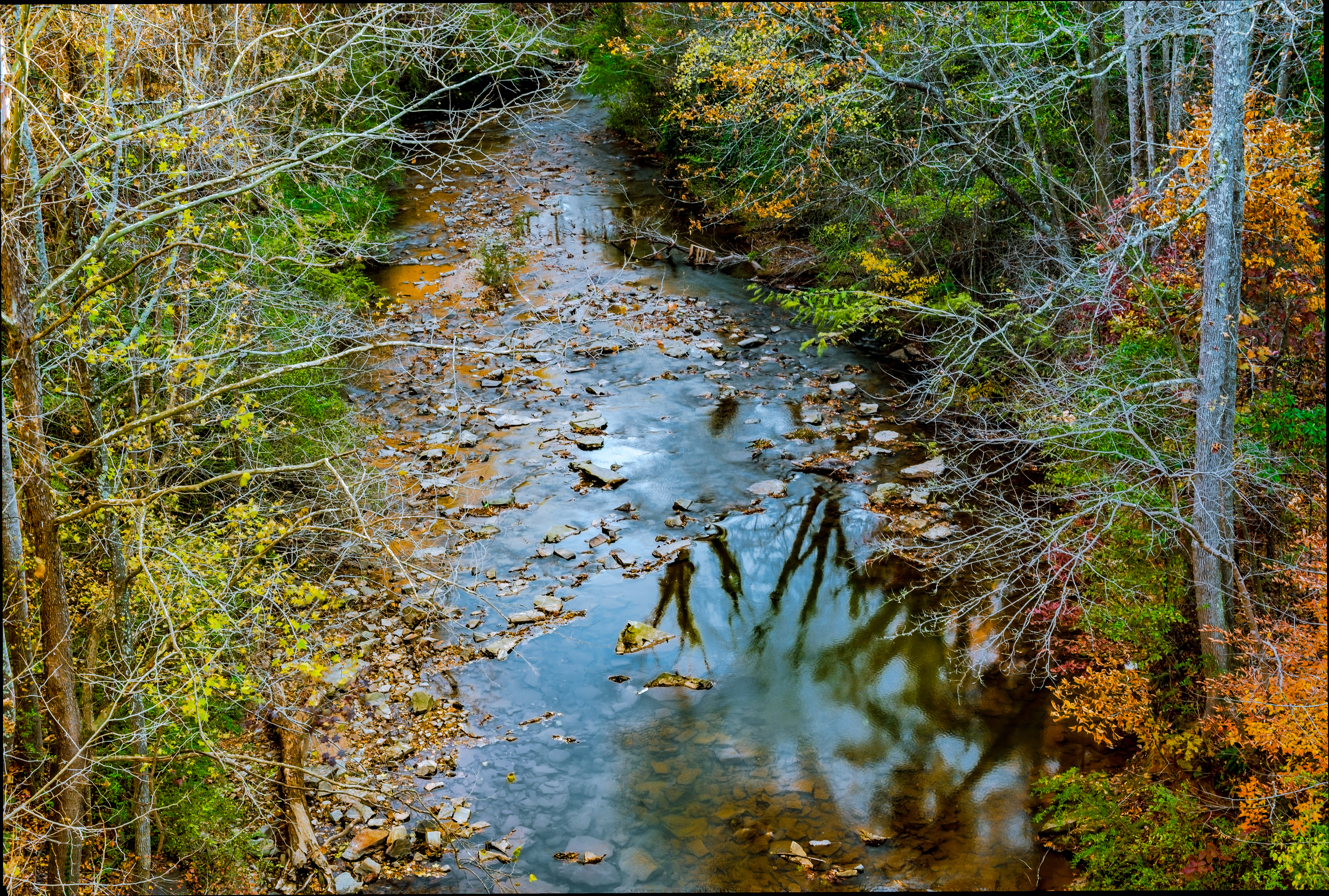 A stream at Silver Comet Trail Image